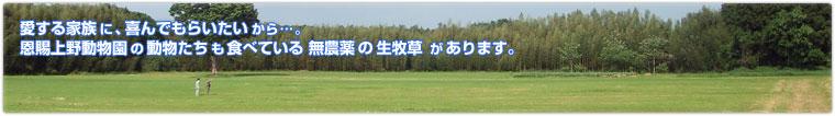 愛する家族に、喜んでもらいたいから…。恩賜上野動物園の動物たちも食べている無農薬の生牧草があります。