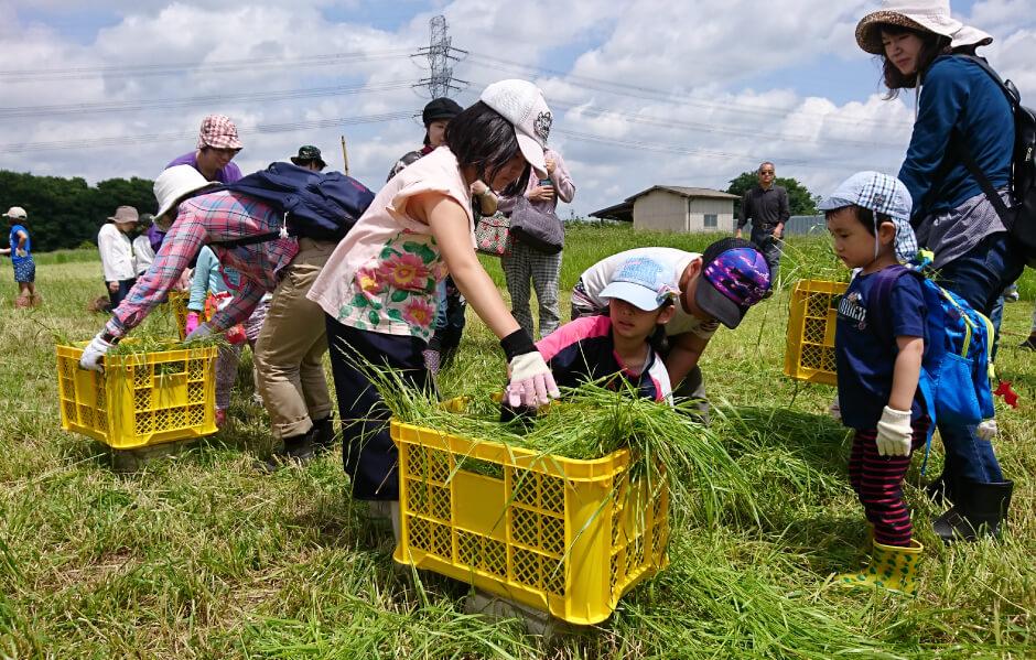 四街道市市民親子農業体験