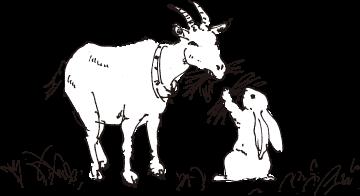 中央牧草センターの動物